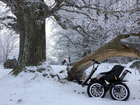 Elektrinis mini visureigis Zoom žiemą